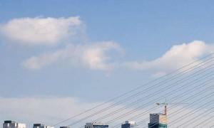 Логистика и дистрибуция в Роттердаме