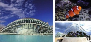 Город науки и искусства